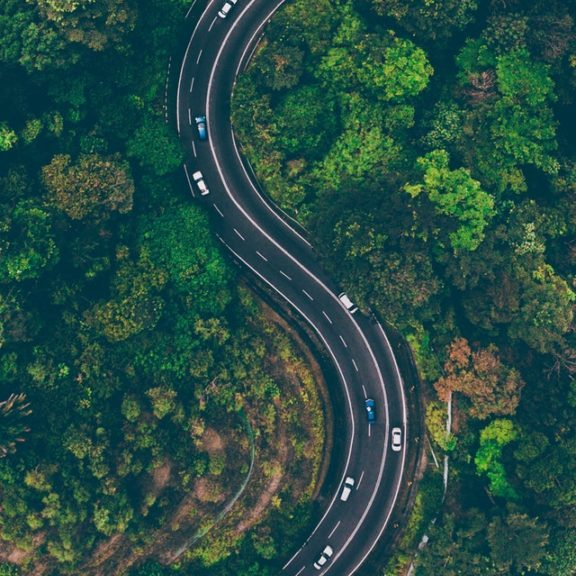 aerial-view-of-road-in-the-middle-of-trees-1173777(1)